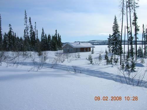 Paysage hivernal paisible