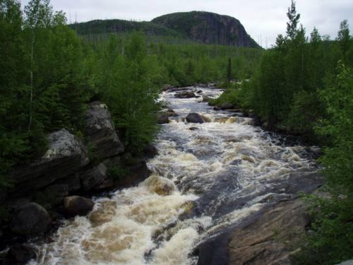 Rivière en mouvement